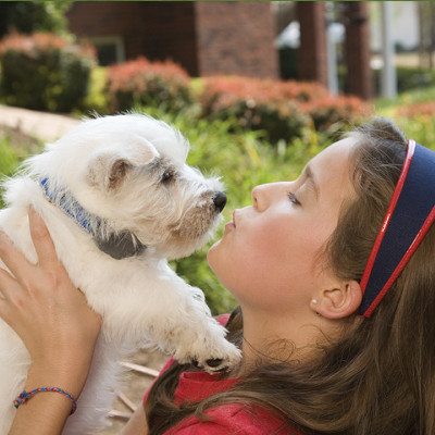 11 Tips for Being an in controlled Pet Owner